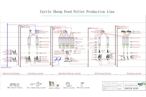 Sheep Feed Pellet Production Line1