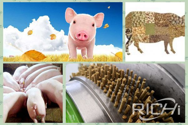 Why do pig farms use pig feed pellets