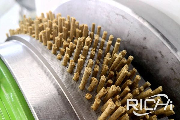 Differences between ring die and flat die feed pellet machine?