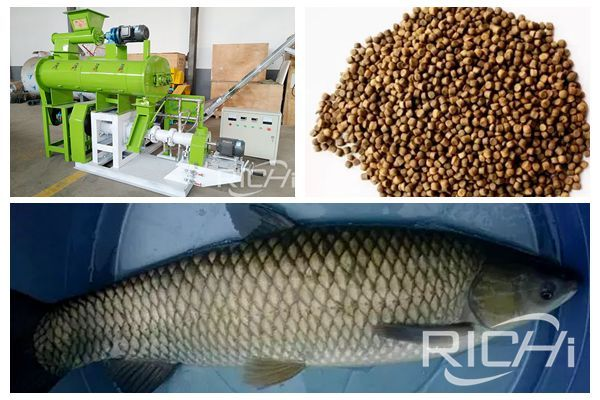 Fish feed pellet machine manufacturer tell you four points to note in spring fish farming