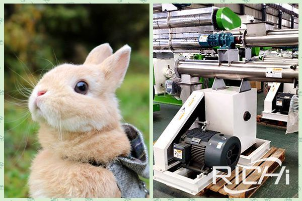 rabbit feed pellet machine