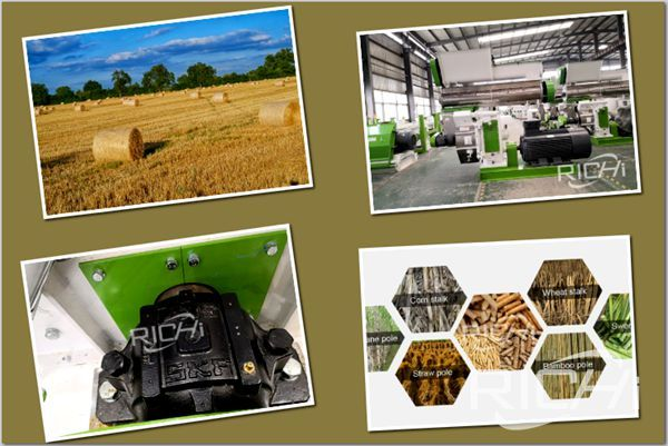How to choose the correct straw pellet machine