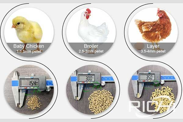 What is the chicken feed formula for chicken feed pellet machine