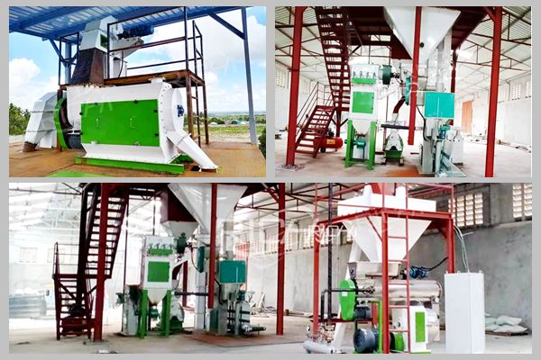 Tanzania animal feed production line project site