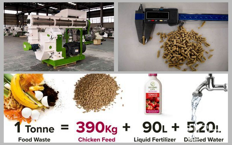Turn food waste into poultry feed through pellet machine