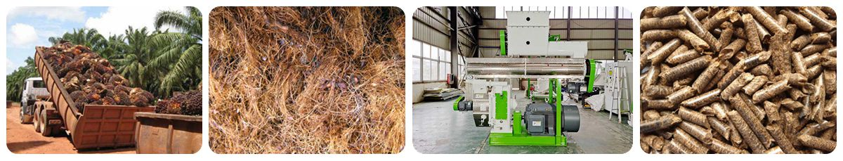 Production Process of Palm Fiber Pellet Machine