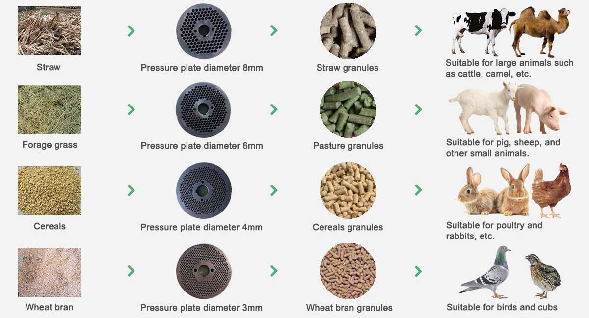 Animal feed pellet machine application