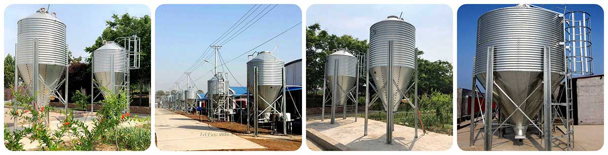 Small capacity silo project real shot