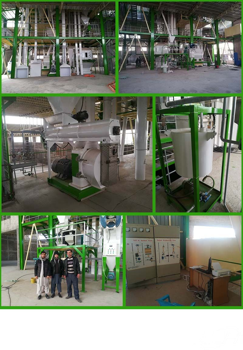 Afghanistan 10T/H Animal Feed Pellet Production Line