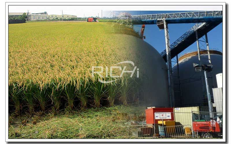 Rice Husk Biomass Pellet Machine Production Line Project
