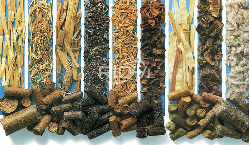 What Are the Raw Materials of the Biomass Pellet Machine?