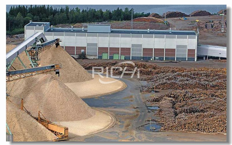 Production Project of 5,000 Tons of Wood Sawdust Biomass Pellets Per Year