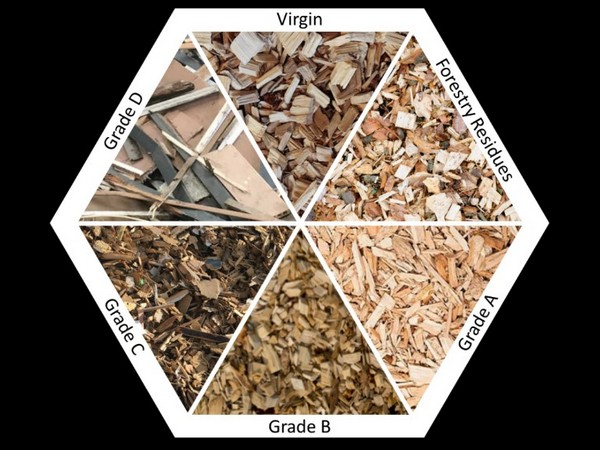 Wood grading and types